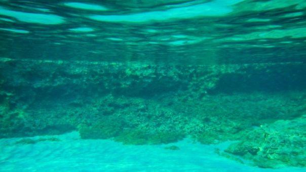 Εφαρμογή που εντοπίζει τη μόλυνση στον βυθό της θάλασσας δημιούργησαν μαθητές λυκείου