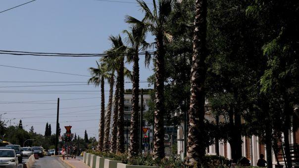 Παρεμβάσεις στον Μεγάλο Περίπατο: Τι αλλάζει σε Εμπορικό Τρίγωνο και Πλάκα