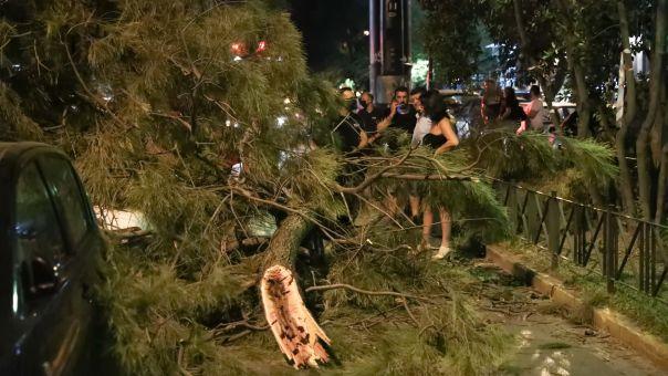 Χαλάνδρι: Πεζός καταπλακώθηκε από δέντρο που έπεσε (pics)