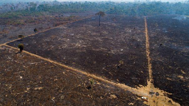 Κλιματική αλλαγή: Τα 2/3 των τροπικών δασών έχουν καταστραφεί ή υποβαθμισθεί παγκοσμίως