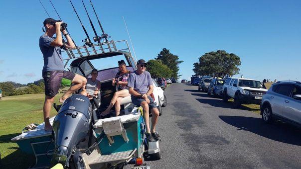 Νέα Ζηλανδία: Άκυρη η εντολή απομάκρυνσης από τις παράκτιες περιοχές