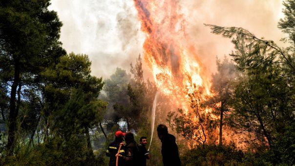 Δύο φωτιές σε Κορινθία και Ηλεία