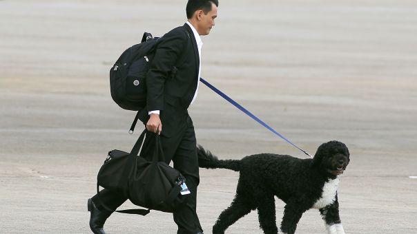 Πέθανε ο Μπο, ο σκύλος του Μπαράκ Ομπάμα - Η συγκινητική ανάρτηση του Ομπάμα (pics)