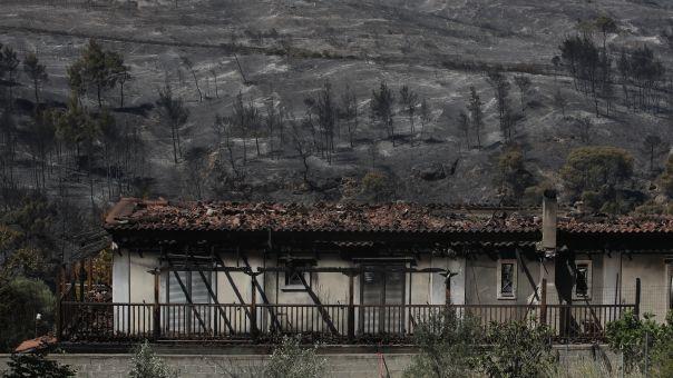 Τεράστια καταστροφή σε Κορινθία - Δυτική Αττική: Κάηκαν πάνω από 71.000 στρέμματα