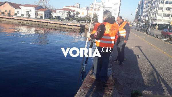 Θεσσαλονίκη: Δεκάδες πατίνια ψάρεψε ο δήμος από τον Θερμαϊκό (video)